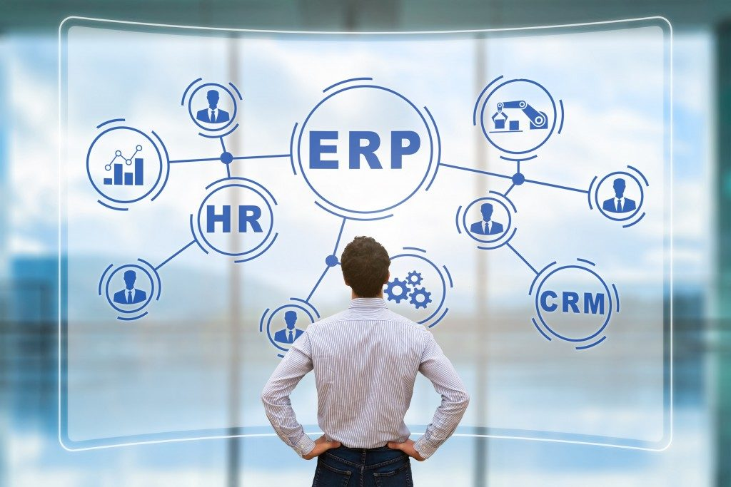 Manager analyzing the structure of ERP